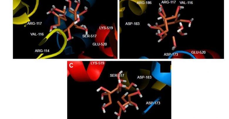 خواص ضد سرطانی و ضد باکتری نانوذره ZVFe