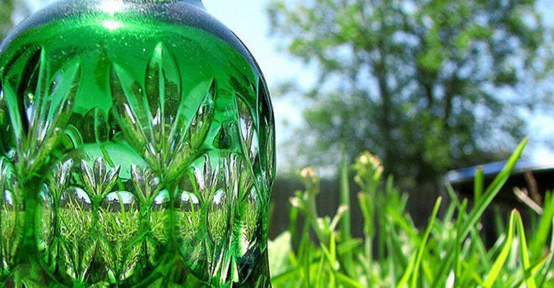 نقش پلاستیکهای زیستی در اقتصاد زیستی مدور
