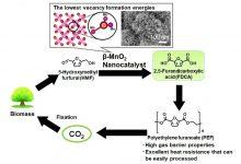 تسریع تولید بیوپلاستیکها به کمک کاتالیستهای سبز