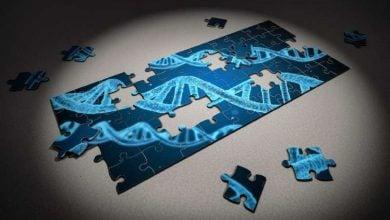 ژنهای دخیل در سرطان کولورکتال و پستان