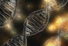 Photo of استفاده از کریسپر، سرنخی برای توسعه آنتی بیوتیکهای بهتر
