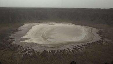 Desert bacteria - biotechnology news