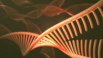 نقص ژنتیکی مشترک در سرطانهای خاص تخمدان و ریه