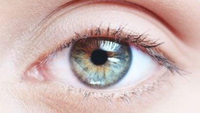 Photo of ترمیم بینایی به کمک سلولهای بنیادی