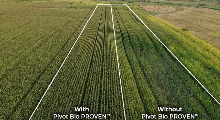 Pivot Bio's new field data - biotechnology news