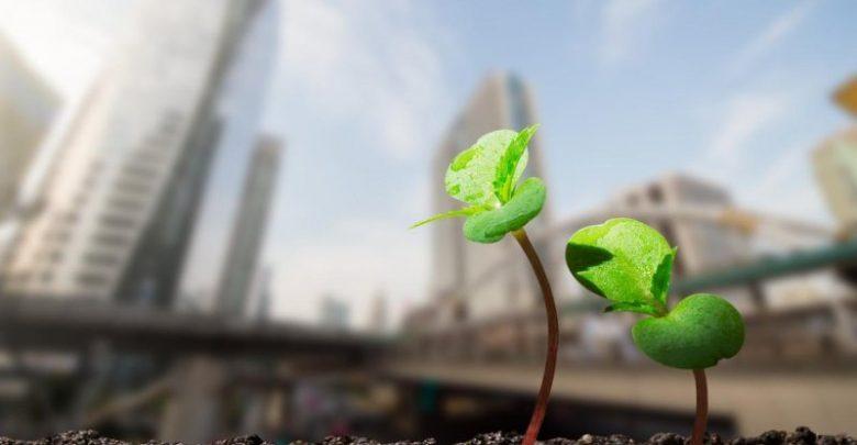 The Carbon Footprint - biotechnology news