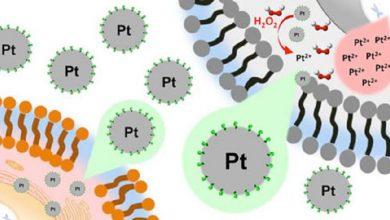 نانوذرات پلاتینیوم