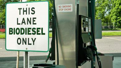 Photo of Biohydrogen: the next green alternative fuel