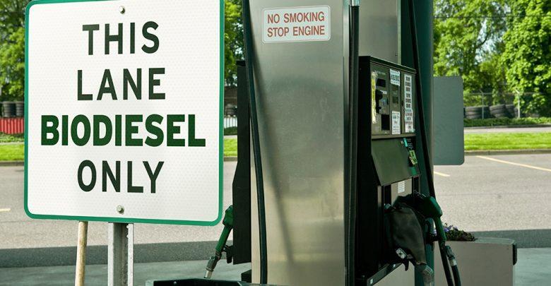 the next green alternative fuel - biotechnology news