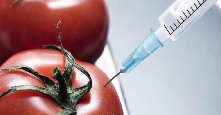 نانوبیوتکنولوژی در صنایع غذایی