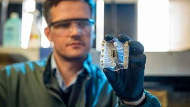 Photo of توسعه ابزاری جدید برای تشخیص زودهنگام تب دنگ