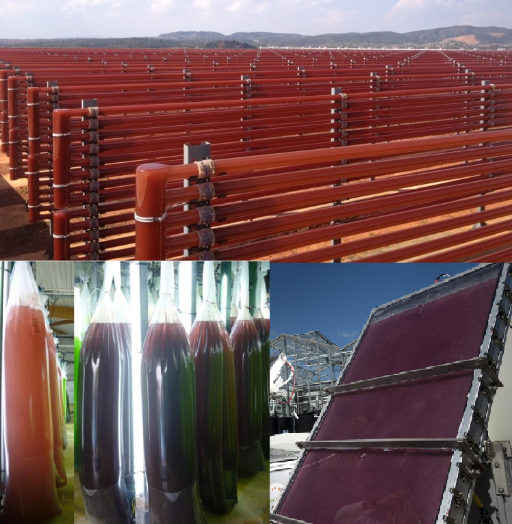 شکل 8- چند نمونه از راکتورهای زیستی نوری برای کشت ریزجلبکهای قرمز