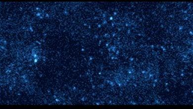 Photo of شناسایی مولکول ها با بارکدهای نوری