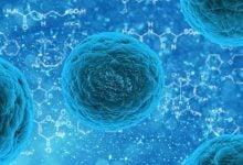 Photo of داروهای مهارکننده CRISPR-Cas9