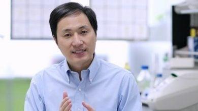 Photo of احتمال مرگ زودرس اولین نوزادان مهندسی ژنتیکی شده دنیا