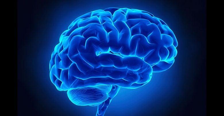 پتانسیل ترمیم کنندگی مغز