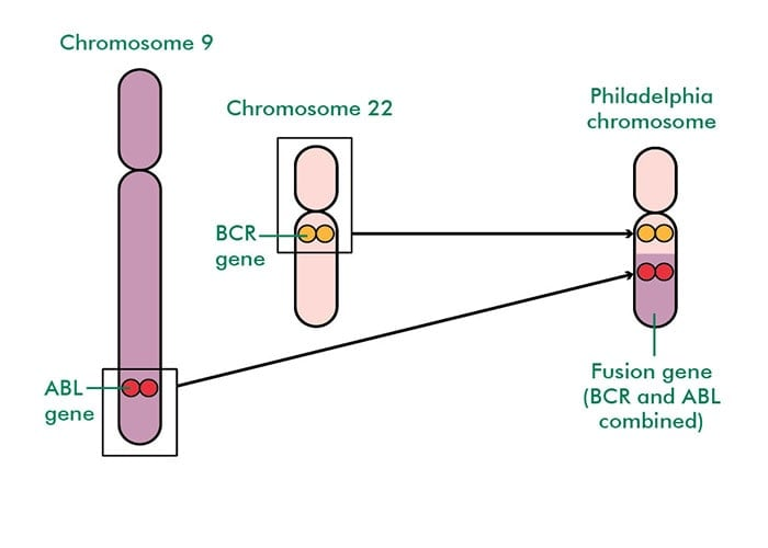 کروموزوم فیلادلفیا