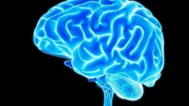 Photo of راه اندازی آزمایشگاه تحقیقاتی برای شناسایی ژن های مرتبط با ناتوانی ذهنی