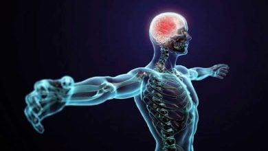 Photo of تولید سلولهای بنیادی عصبی از آستروسیتها