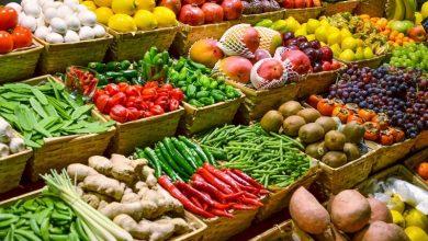 Photo of گیاهان تراریخته راهی به سوی تامین امنیت غذایی