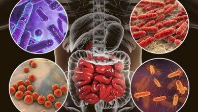 Photo of افزایش تاثیر ایمنی درمانی در مقابله با سرطان