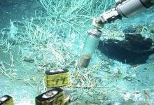 Photo of تجزیه نفت به گاز توسط میکروب جدید