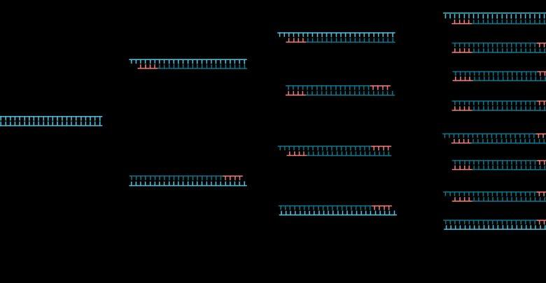 ساخت دستگاه PCR با کمک فناوری میکروفلوئیدیک