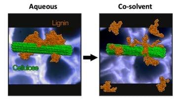 جداسازی لیگنین از سلولز
