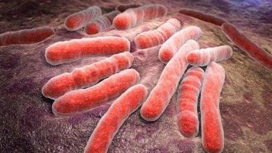 Photo of ساخت واکسن برای بیماری کشنده سل