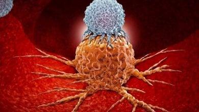 Photo of به خواب رفتن سلول های سرطانی با داروهای سرطان سینه