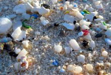 Photo of حذف پلاستیک از آب با کمک فناوری نانو