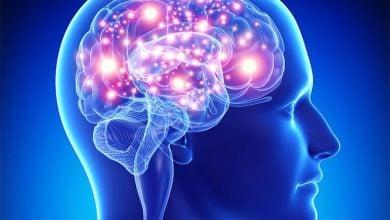 Photo of مطالعه بر روی بیماری های عصبی در شرایط بی وزنی