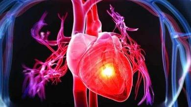 Photo of تسریع تکوین سلول های قلبی با روشی نوین