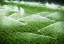 Photo of استفاده از فناوری نانو برای حل مشکل آبیاری در کشاورزی