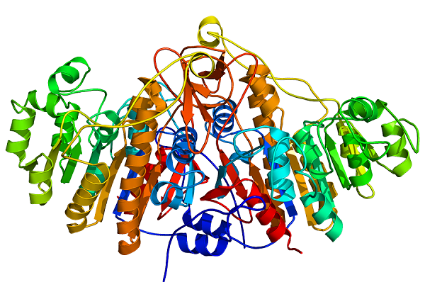 پروتئین نوترکیب