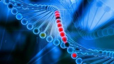 Photo of کمک به سیستم ایمنی با فناوری CRISPRضد سرطان