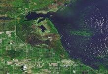 Photo of افزایش رشد جلبک ها در دریاچه های جهان