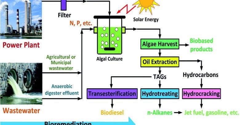 تولید و انتشار دیاکسید کربن توسط منابع مختلف باعث ایجاد تغییرات چشمگیری در آب و هوا شده است که از مهمترین نگرانیهای جهانی مربوط به گرم شدن کره زمین است. یکی از رویکردهای حذف دیاکسید کربن، استفاده از میکروجلبکها است که با تولید سریع زیستتوده باعث حذف دیاکسید کربن میشوند. علاوه بر این، میکروجلبکها پتانسیل استفاده برای تصفیه فاضلاب را دارند.