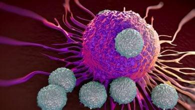 Photo of تأثیر کراتین در ایمنی درمانی سرطان