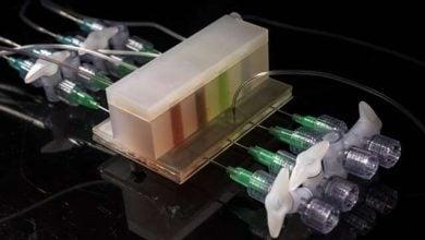 آشکارسازی میکروبیوم با کمک روده مصنوعی