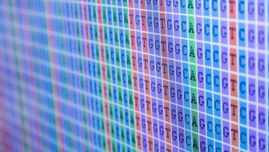 Photo of نقش توالییابی ژنوم در درمان شخصی سرطان