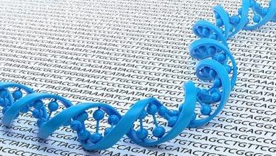 Photo of بررسی تنوع گسترده ژنومی در جمعیت ایران