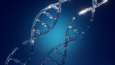 Photo of کاهش علائم تشنجی در بیماران صرع با کمک ژن درمانی