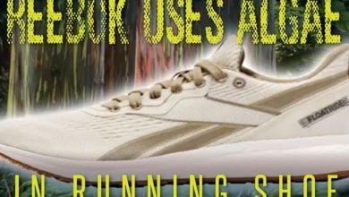 Photo of تولید کفش های جدید با لایه های جلبک