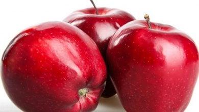 Photo of کاهش میزان ضایعات میوه ها پس از برداشت