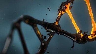 Photo of ارتباط DNA غیرکدشونده و خطر ابتلا به سرطان