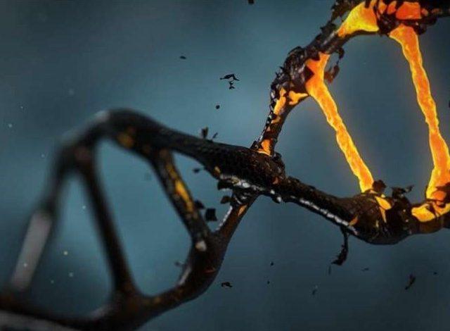 کشف ارتباط میان DNA غیرکدشونده و خطر ابتلا به سرطان