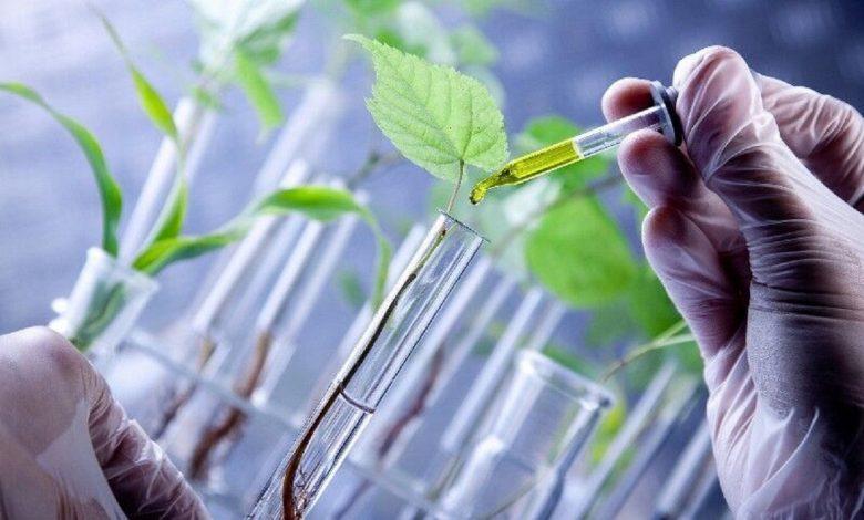 هزینه 96 میلیون دلاری برای توسعه پروژههای زیست فناوری