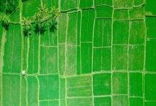 Photo of ده فناوری علیه تغییرات آب و هوایی