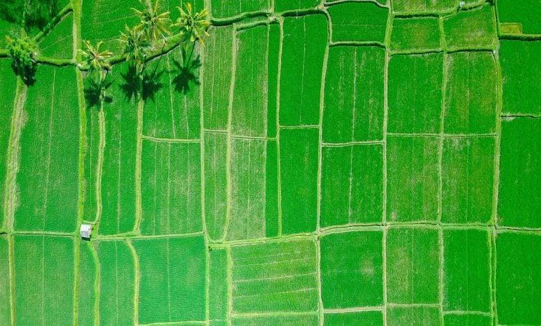 ده فناوری علیه تغییرات آب و هوایی